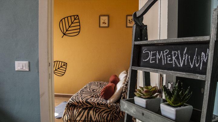 Sempervivum apartment Cuckoo Florence